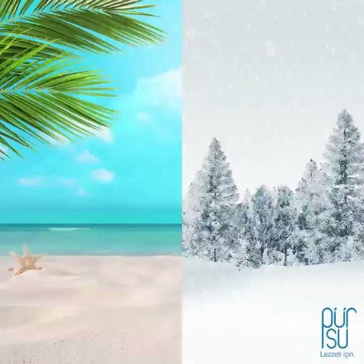 Sizce yaz ayı mı yoksa kış ayı mı daha güzel?