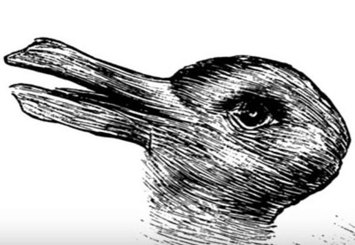 Resimde ilk tavşan mı yoksa ördek mi gördünüz?